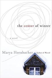 Book Cover for THE CENTER OF WINTER