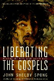 Cover art for LIBERATING THE GOSPELS