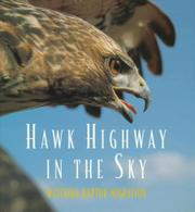 HAWK HIGHWAY IN THE SKY by Caroline Arnold