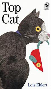 Book Cover for TOP CAT
