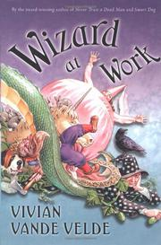 WIZARD AT WORK by Vivian Vande Velde