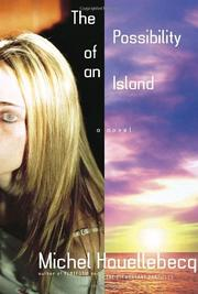Cover art for THE POSSIBILITY OF AN ISLAND