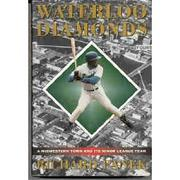Cover art for WATERLOO DIAMONDS