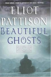 Cover art for BEAUTIFUL GHOSTS