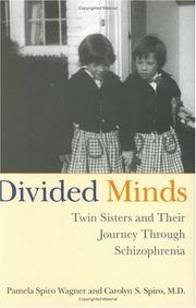 Book Cover for DIVIDED MINDS