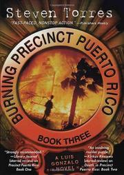 BURNING PRECINCT PUERTO RICO by Steven Torres