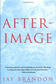 AFTERIMAGE by Jay Brandon