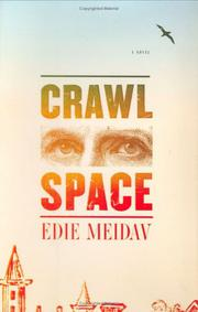 CRAWL SPACE by Edie Meidav