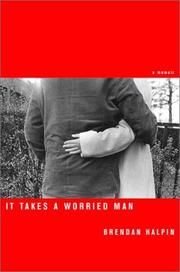 IT TAKES A WORRIED MAN by Brendan Halpin