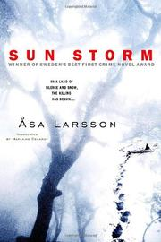 Cover art for SUN STORM