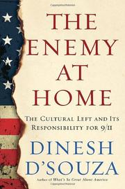 Cover art for THE ENEMY AT HOME