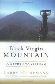 BLACK VIRGIN MOUNTAIN by Larry Heinemann