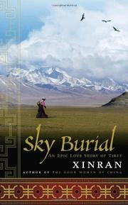 Cover art for SKY BURIAL