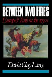 BETWEEN TWO FIRES: Europe's Path in the 1930s by David Clay Large