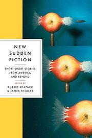 NEW SUDDEN FICTION by Robert Shapard