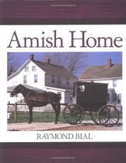 AMISH HOME by Raymond Bial