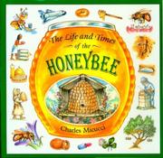 THE LIFE AND TIMES OF THE HONEYBEE by Charles Micucci
