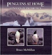PENGUINS AT HOME by Bruce McMillan
