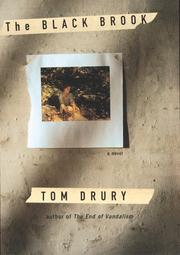 THE BLACK BROOK by Tom Drury