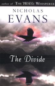 Book Cover for THE DIVIDE