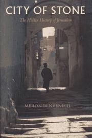 CITY OF STONE by Meron Benvenisti