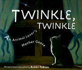 TWINKLE, TWINKLE by Katrina Allen