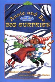 Cover art for ANNIE AND BO AND THE BIG SURPRISE