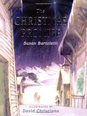Cover art for THE CHRISTMAS PROMISE