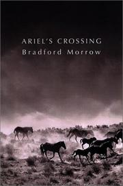 ARIEL'S CROSSING by Bradford Morrow