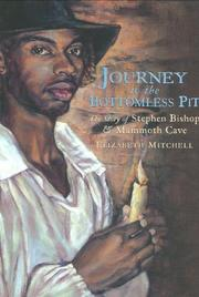 JOURNEY TO THE BOTTOMLESS PIT by Elizabeth Mitchell