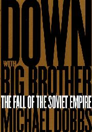 DOWN WITH BIG BROTHER by Michael Dobbs