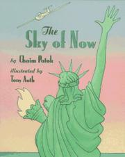 THE SKY OF NOW by Chaim  Potok