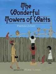 Book Cover for THE WONDERFUL TOWERS OF WATTS