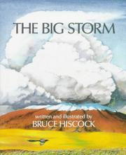 Cover art for THE BIG STORM