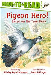 Cover art for PIGEON HERO!