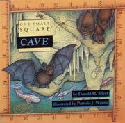 ONE SMALL SQUARE: CAVE by Donald M. Silver