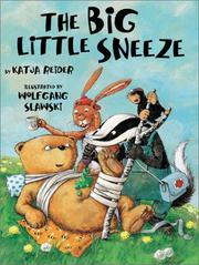 Book Cover for THE BIG LITTLE SNEEZE