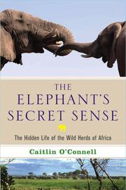 THE ELEPHANT'S SECRET SENSE by Caitlin O'Connell