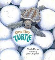 Cover art for ONE TINY TURTLE