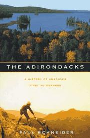 THE ADIRONDACKS by Paul Schneider