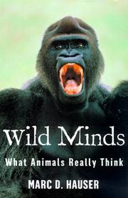 Cover art for WILD MINDS