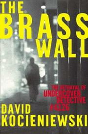 THE BRASS WALL by David Kocieniewski