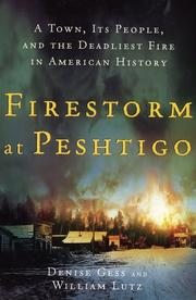 FIRESTORM AT PESHTIGO by Denise Gess