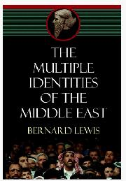 Cover art for THE MULTIPLE IDENTITIES OF THE MIDDLE EAST