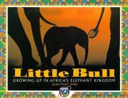 LITTLE BULL by Ellen Foley James