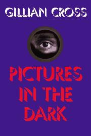 Cover art for PICTURES IN THE DARK