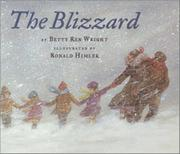 Book Cover for THE BLIZZARD