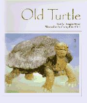Book Cover for OLD TURTLE