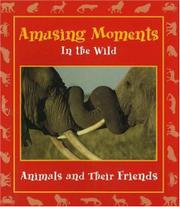 Cover art for AMUSING MOMENTS IN THE WILD