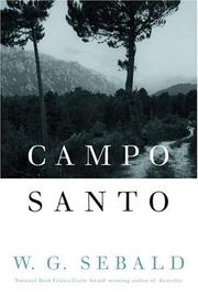 Book Cover for CAMPO SANTO